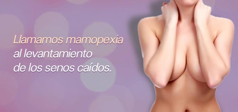 bi_m_mamopexia